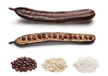 LBG Sicilia ingredients alimentaires naturels caroube